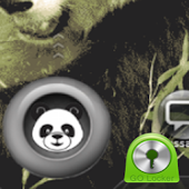 Panda GO Locker Theme