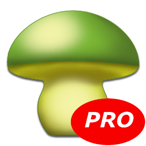 MushToolPro - Bolets Setas