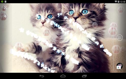 可愛貓咪動態桌布