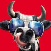 Cow Simulator : Crazy Rampage