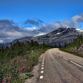 Nordic Summer by Elisabeth Johansson - Landscapes Mountains & Hills ( sweden, mountain, snow, summer, road, arctic, gällivare, ritsem,  )