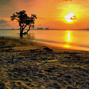 mangroves waiting sunset by Fajar Vandra - Landscapes Sunsets & Sunrises