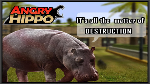 Angry Hippo 3D Game