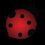 Mancala Bugs