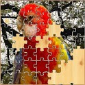 bird jigsaw puzzle icon