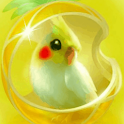 Little Bird Yellow Live Wallpa logo