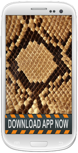 Snake Skin Android Wallpapers