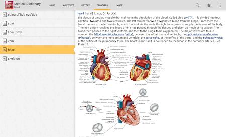 Dorland's Illustrated Medical 4.3.136 screenshot 75889