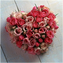 Rose Heart icon