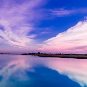 Edgartown Sunrise by Miren Etcheverry - Landscapes Waterscapes ( water, martha's vineyard, vineyard, bay, waterscape, sunset, seascape, sunrise, edgartown, creativity, lighting, art, artistic, purple, mood factory, lights, color, fun )