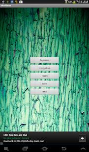 Concentration Game - screenshot thumbnail