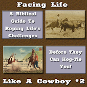 Facing Life LIke A Cowboy #2