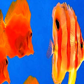 Ripple Fish LWP Pro icon