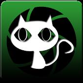 Kitty Cat Cam