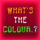 What's The Color logo