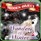 Hidden Obj - Wonders of Winter icon