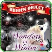 Hidden Obj - Wonders of Winter