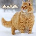 Animal world icon