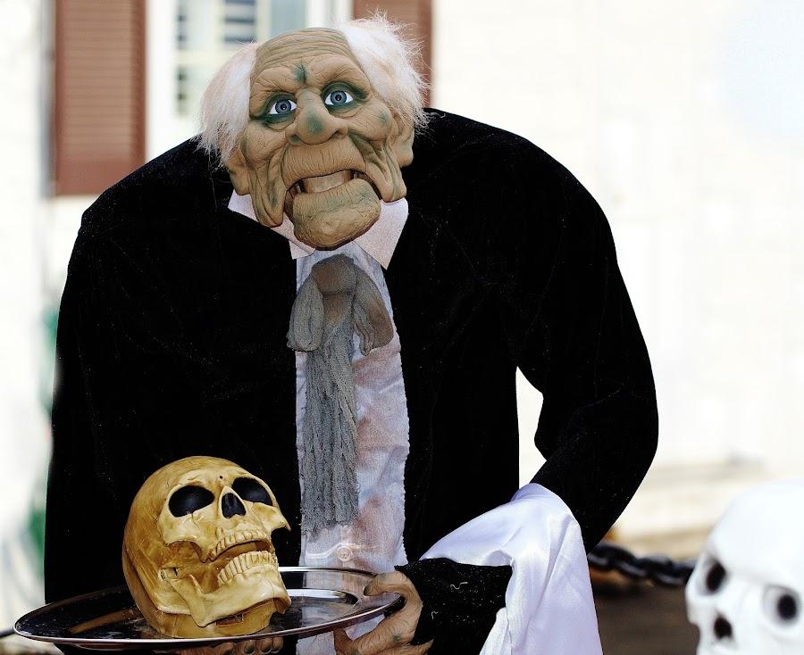Halloween portrait  by Jadwiga Dabrowski - Public Holidays Halloween ( halloween portrait )