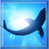 Underwater Fish Live Wallpaper