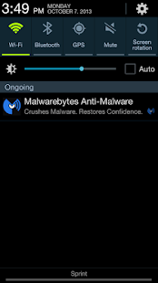 Malwarebytes Anti-Malware - screenshot thumbnail