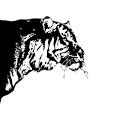 虎ブラ! Lite icon