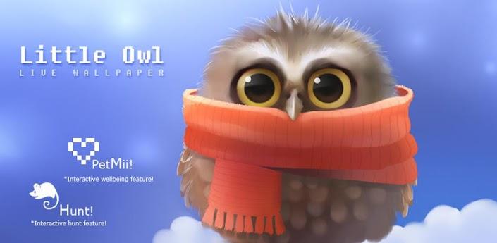 Little Owl apk