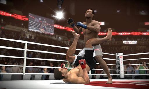 Mix Martial Combat