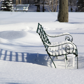 Winter Bench by Marsha Biller - Artistic Objects Furniture ( winter, bench, metal, shadow, snow )