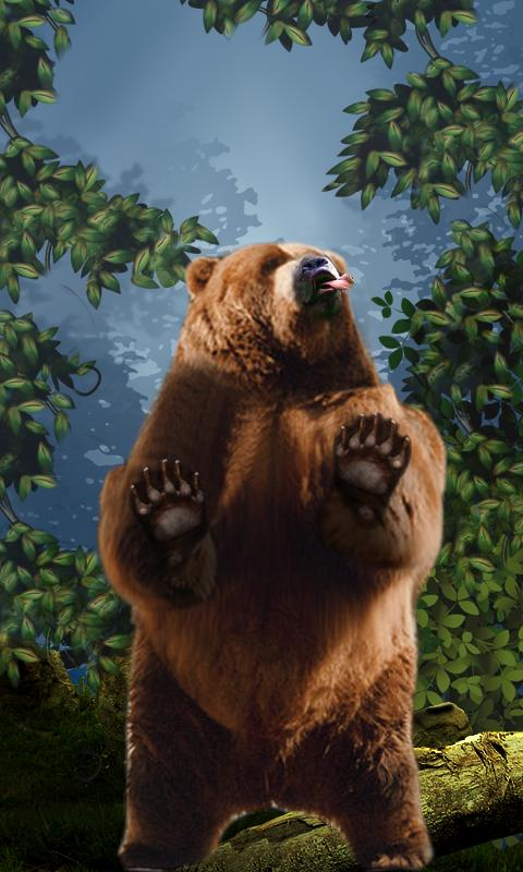 Dancing Bear Live Wallpaper - screenshot