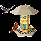 Bird Feeder Logger-N. America