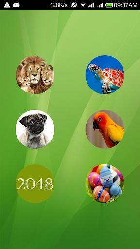 Animals 2048