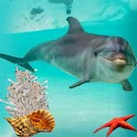 Friendly Dolphin Pet Ocean icon