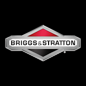 Briggs & Stratton Home Depot