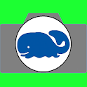 Whales Live Wallpaper icon