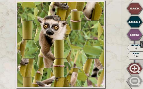 HexSaw - Zoo - screenshot thumbnail