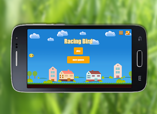 Racing Bird