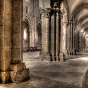 Fossanova 2 by Riccardo Lazzari - Buildings & Architecture Places of Worship ( gothic, fossanova, cistercian, abbey, building, interior, worship )