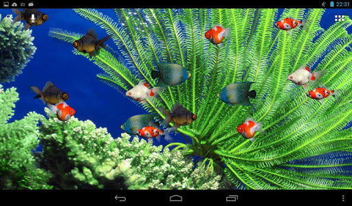 Aquarium Live Wallpaper screenshot