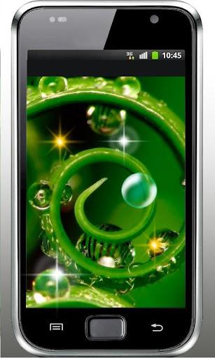 Drops Dew HD live wallpaper