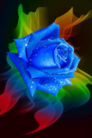 Rose 3D Live Wallpaper - screenshot