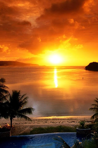 Sunset Nature Live Wallpaper