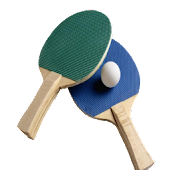 Online Ping Pong Pro