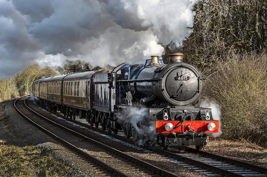 King Richard III by Vin Scothern - Transportation Trains