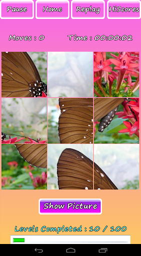 Butterfly Photo Puzzle