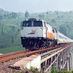 Lodaya Train by Husni Mubarok - Transportation Trains