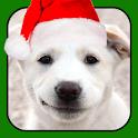 A Talking Puppy icon