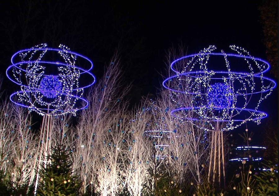 by Siro Meghali - Public Holidays Christmas ( champs elysse, holiday lights )