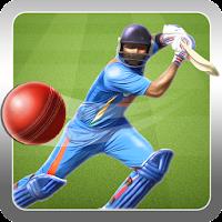 Super Cricket '14 1.9
