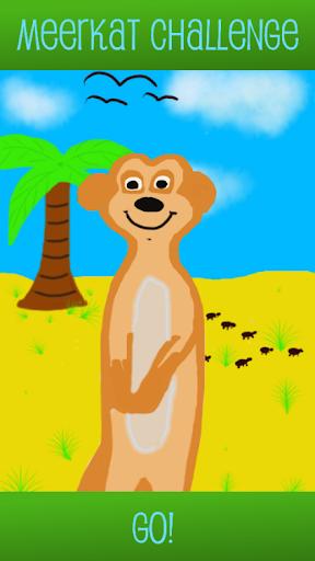 Meerkat Challenge